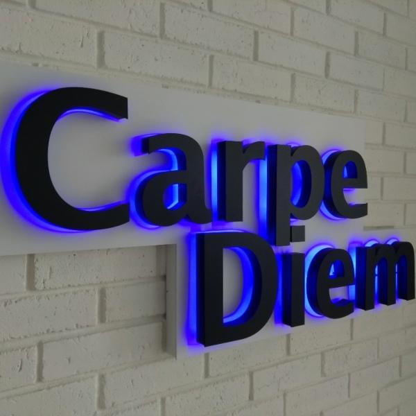 Вывеска из букв с подсветкой «Carpe Diem»